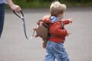 LittleLife Safety Rein ,
